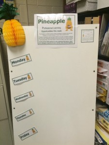 The Pineapple Professional Learning Board
